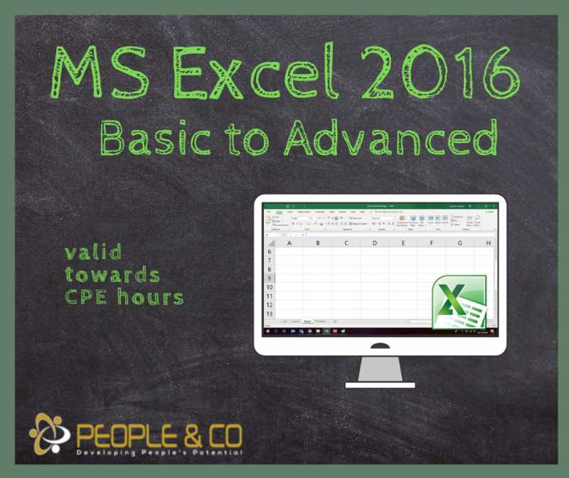 Ms Excel 2016 Basic - Advanced